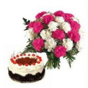 Carnations with Cake